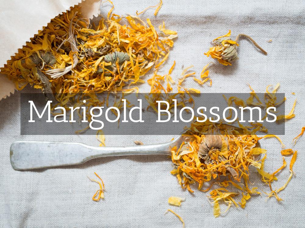Marigold-Blossoms-Medicinal Tea-Herbaria