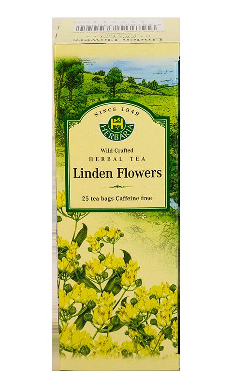 Herbaria-Linden-Flowers-v