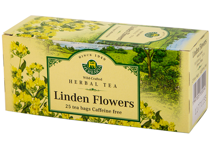 Herbaria-Linden-flowers-h