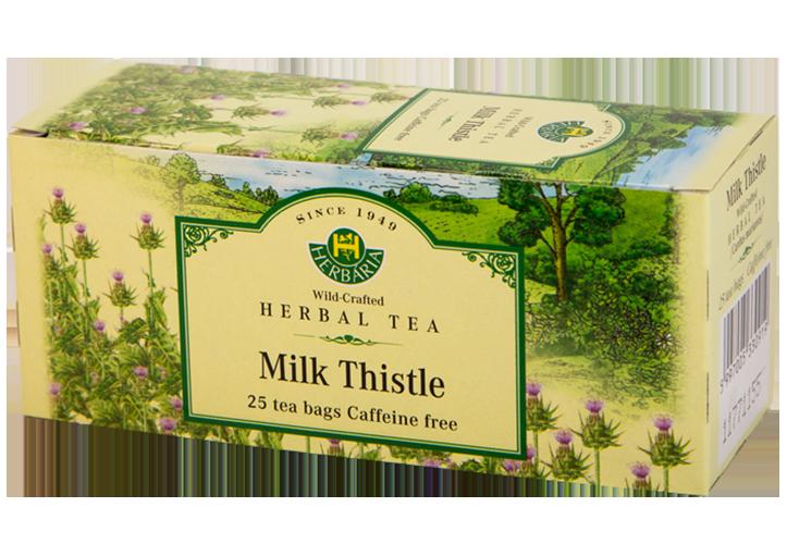 Herbaria-Milk-thistle-h