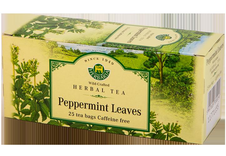 Herbaria-Peppermint-h