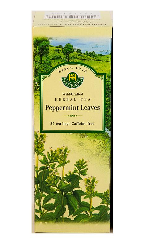 Herbaria-Peppermint-v