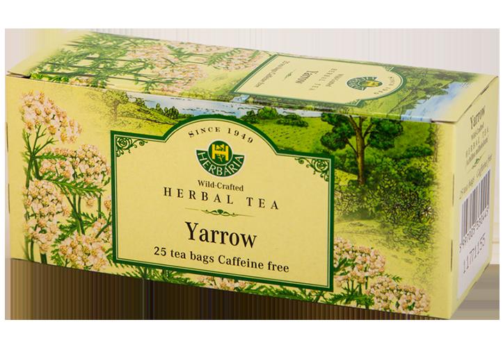 Herbaria-Yarrow-h