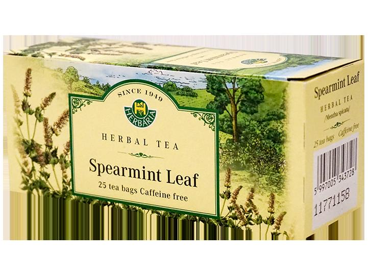 Herbaria-Spearmint-h