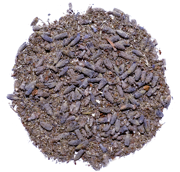 Herbaria-Lavender-top view