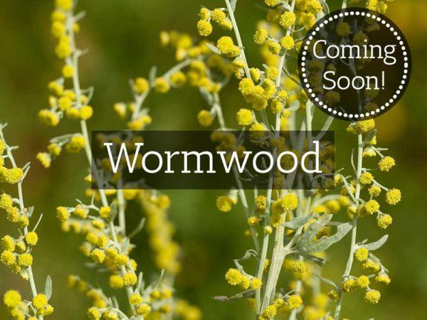 Herbaria-Herbal-Teas-wormwood-coming-soon-thumbnail